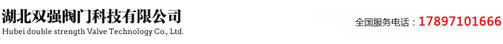 湖北双强阀门科技有限公司_Logo