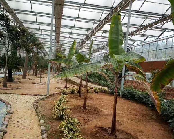 生态温室大棚