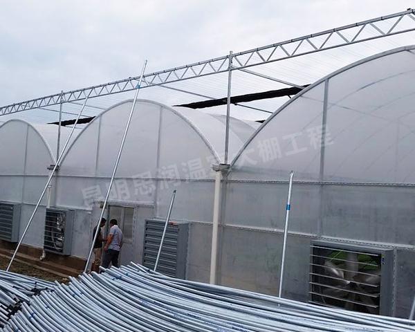 连栋温室钢架大棚