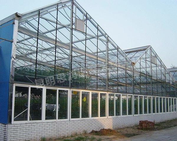 连栋温室玻璃大棚