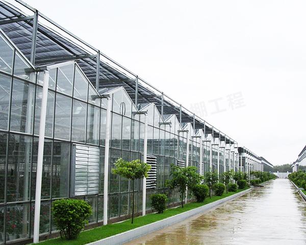 新型智能温室大棚