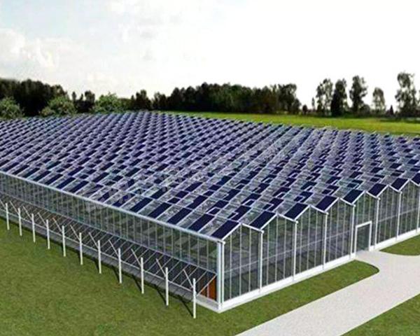 智能连栋温室大棚建设