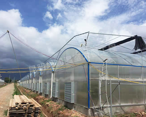 智能温室育苗大棚