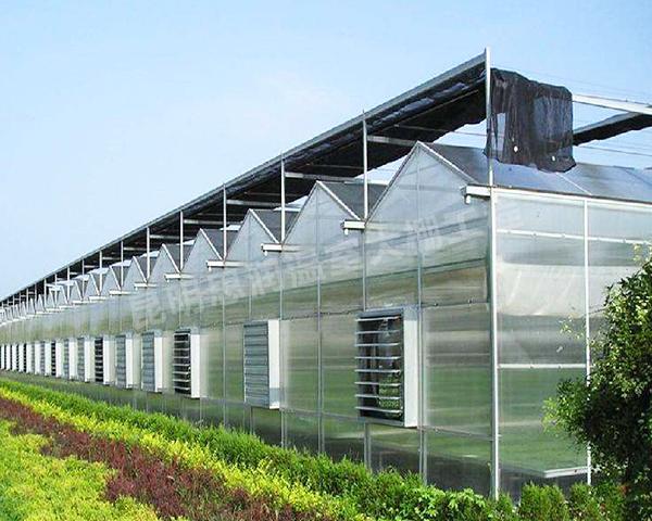 文山温室大棚建设公司