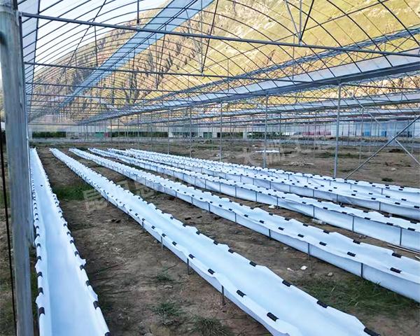 临沧蔬菜大棚建造公司