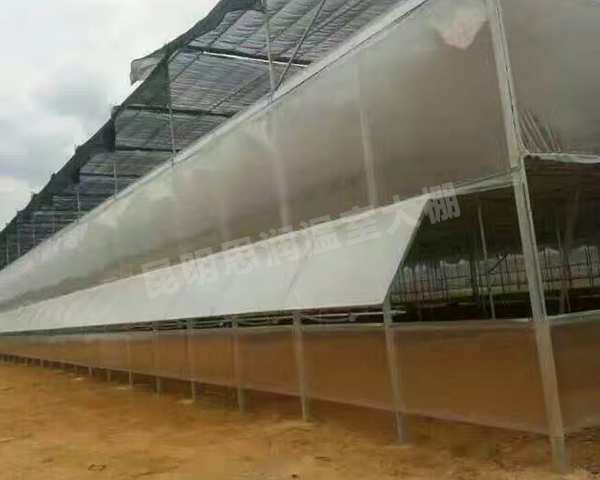 养殖温室大棚
