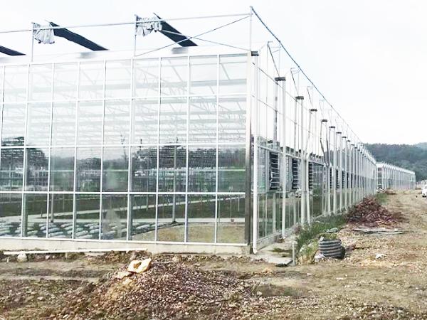 昆明温室大棚厂家
