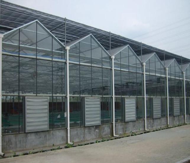 昆明智能温室大棚建造