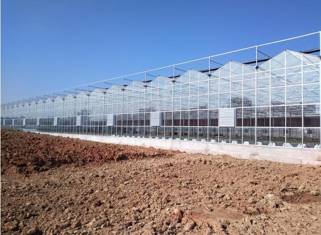 昆明玻璃温室大棚