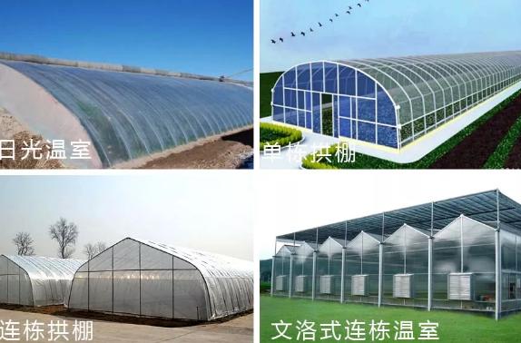 昆明温室大棚造价