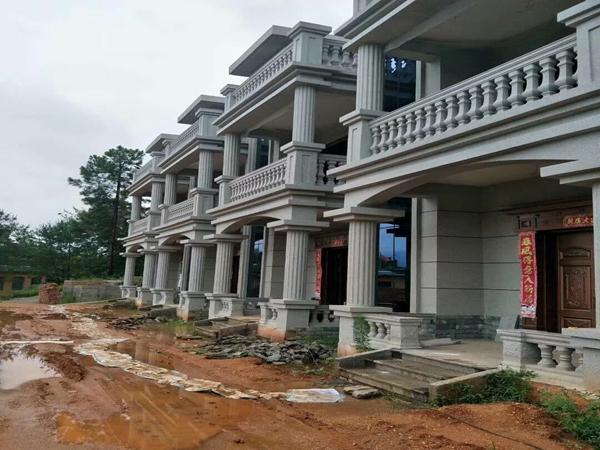 三台李先生别墅外墙装修现代风格案例
