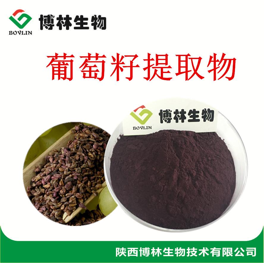葡萄籽提取物 葡萄籽原花青素 OPC95%