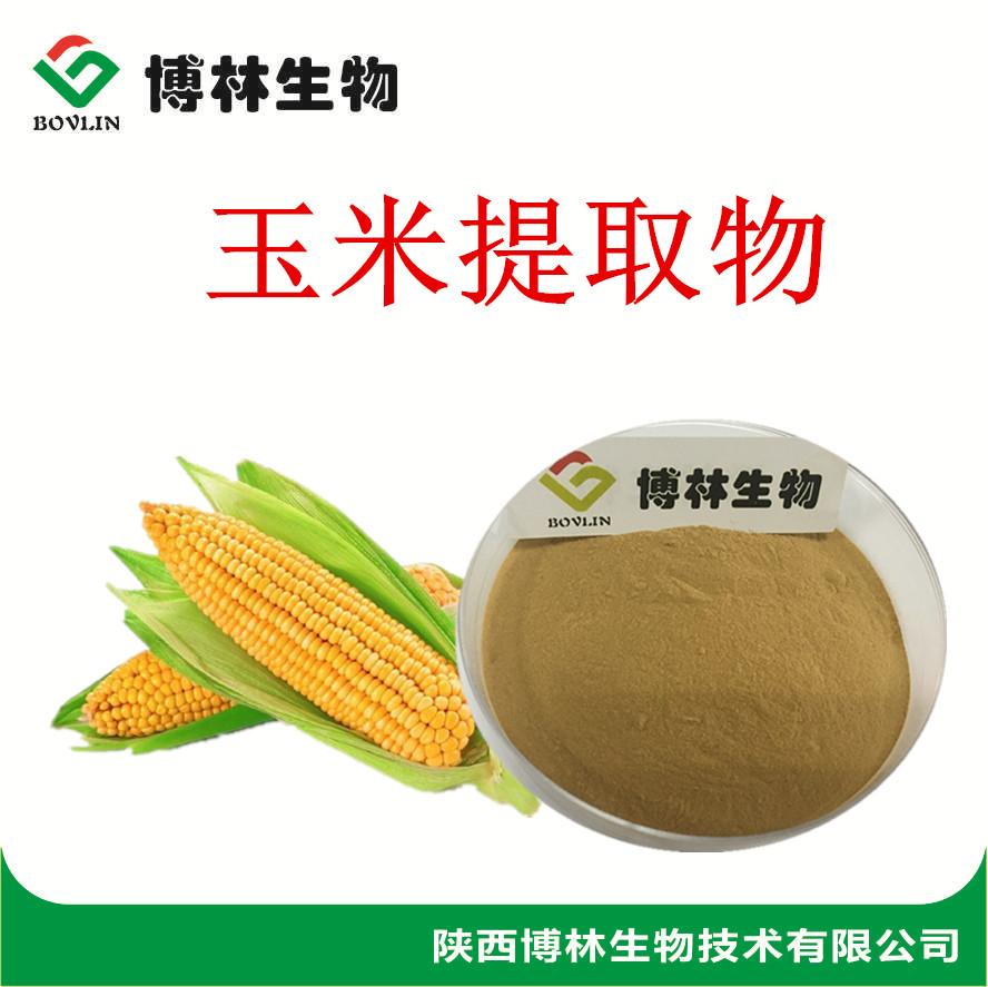 玉米提取物10:1 20:1  玉米粉谷物粉 玉米多肽