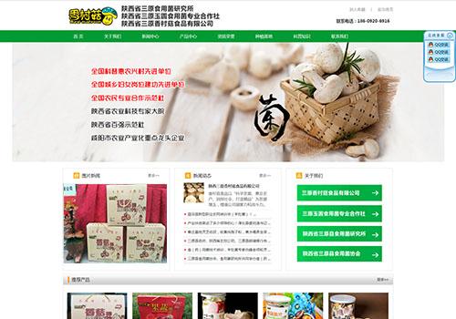 陕西省三原香村菇食品有限公司