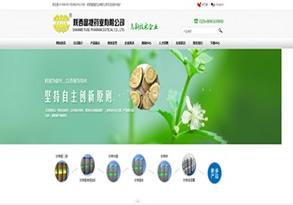 陕西富捷药业有限公司