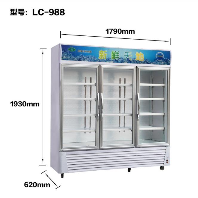 陜西三門冷藏柜