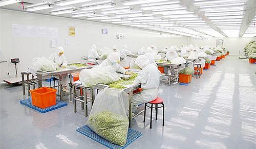 食品工业净化工程