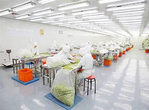 食品工业洁净工程
