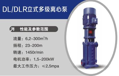 DL/DLR立式多级离心泵