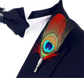 陕西孔雀羽毛装饰品