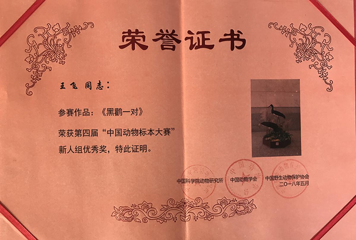 孔雀标本大赛荣誉证书