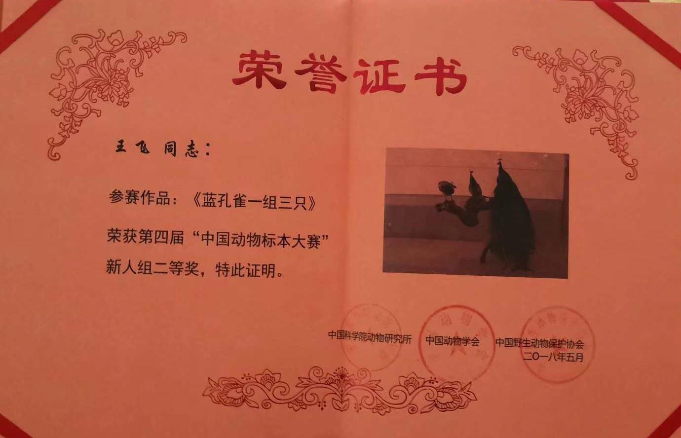 蓝孔雀标本证书