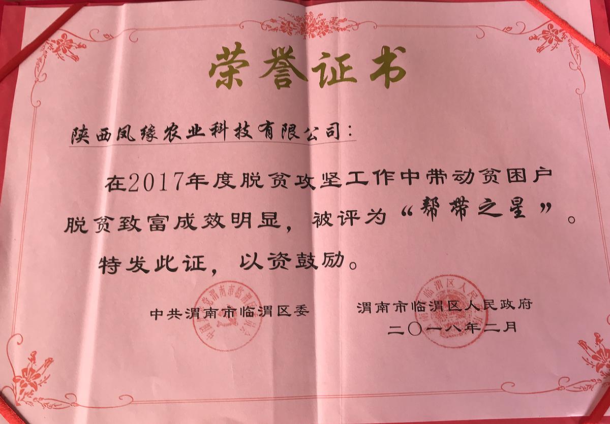 孔雀养殖荣誉证书