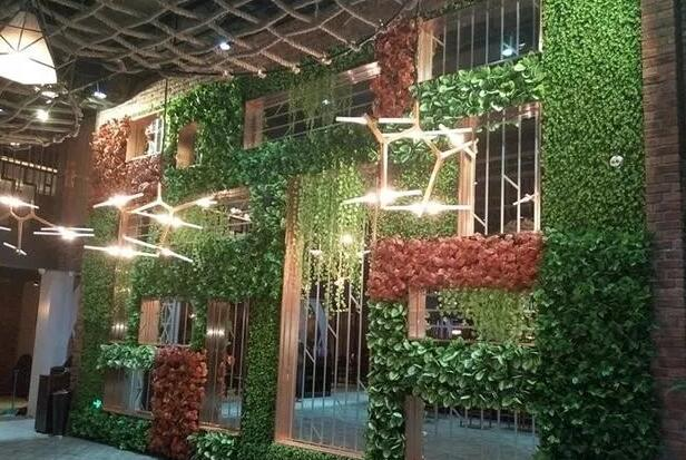 总是在仿真植物墙与真植物墙之间犹豫着......