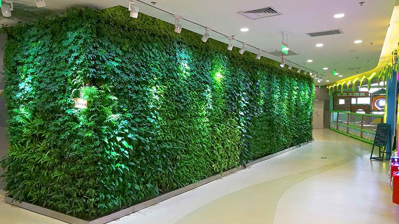 室内植物墙-大话南门
