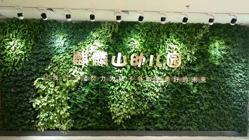 室内植物墙-宏府麒麟山幼儿园