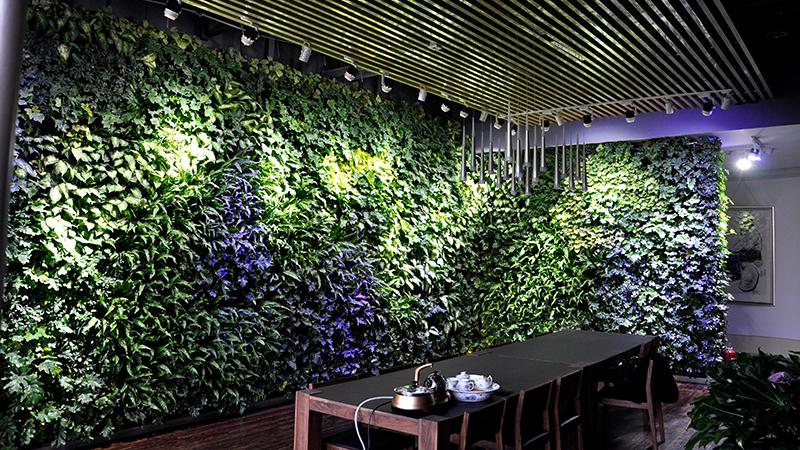 室内植物墙-高新王西京美术城