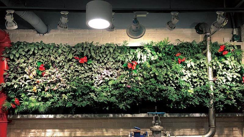 环保集团地下餐厅植物墙