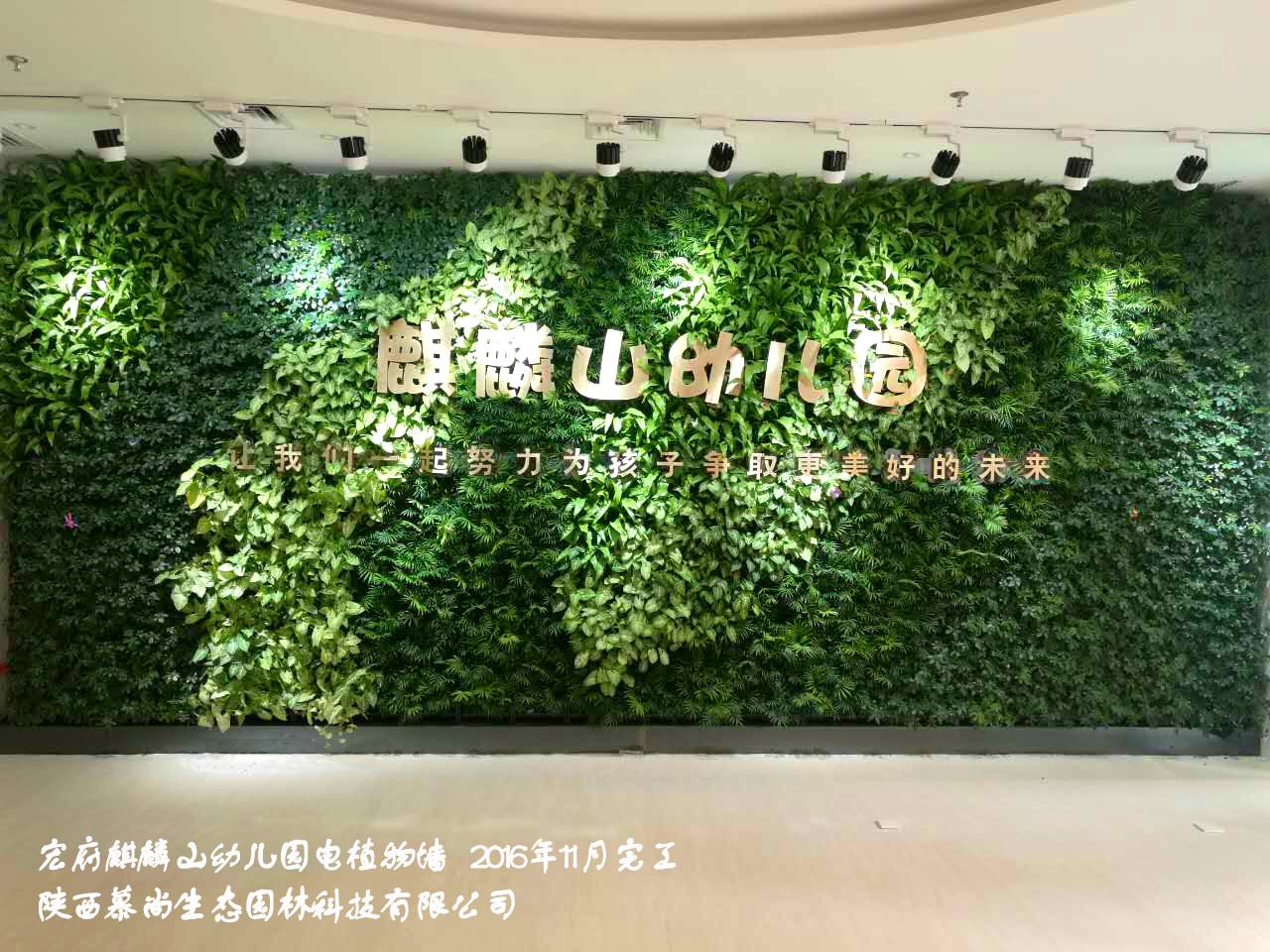 西安植物墻廠家