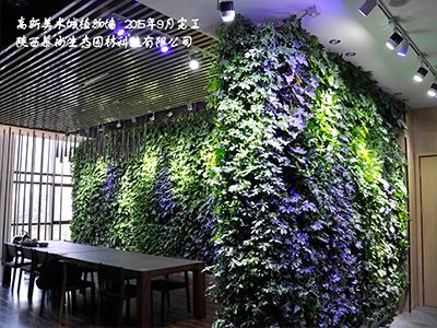 高新王西京美术城绿植墙