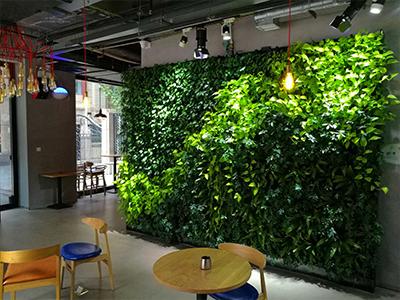 凤城八路MOJO咖啡厅绿植墙