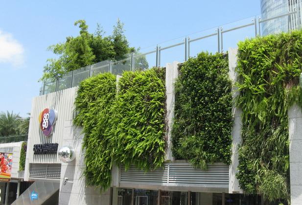 立體綠化公司