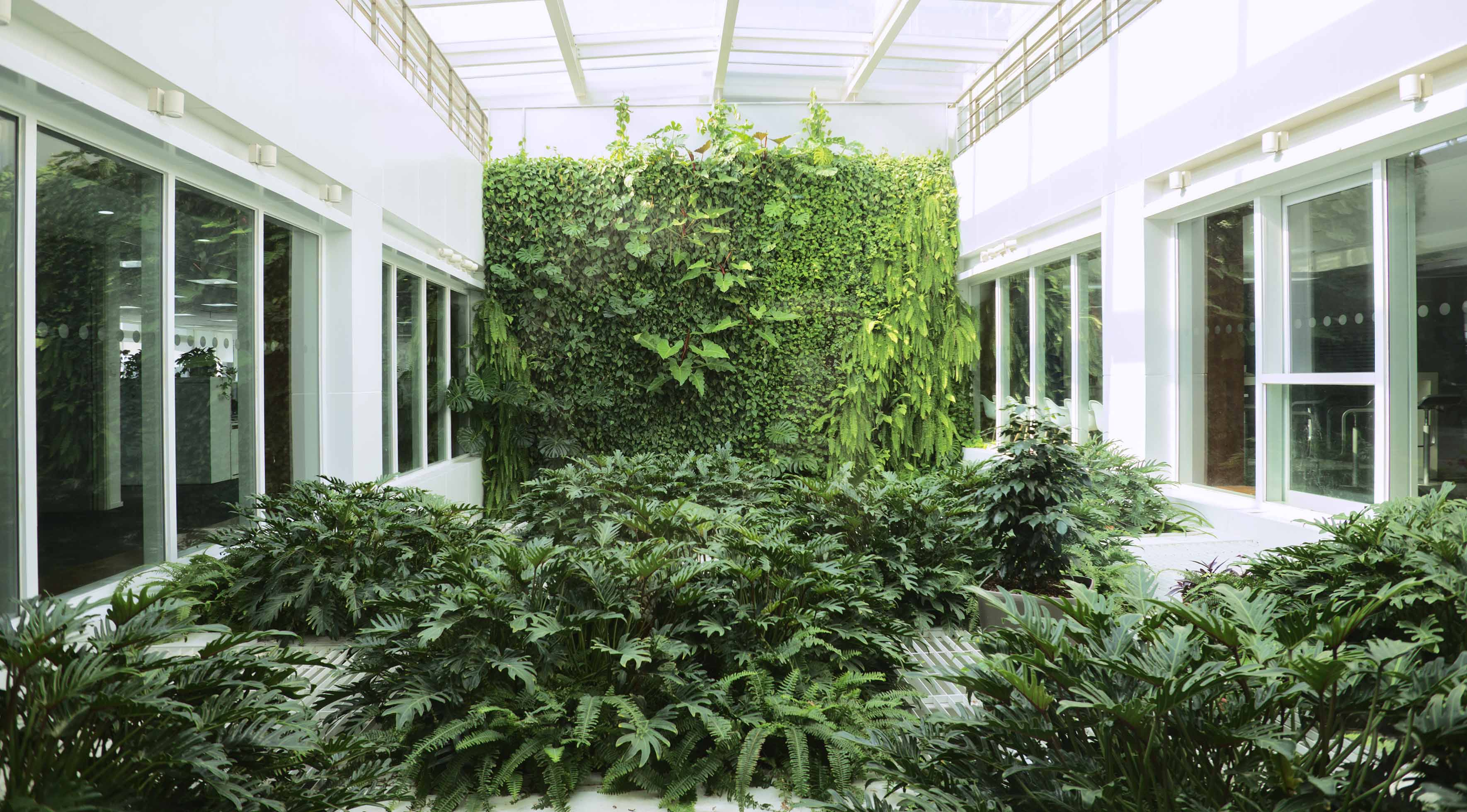 办公室植物墙的选择方法