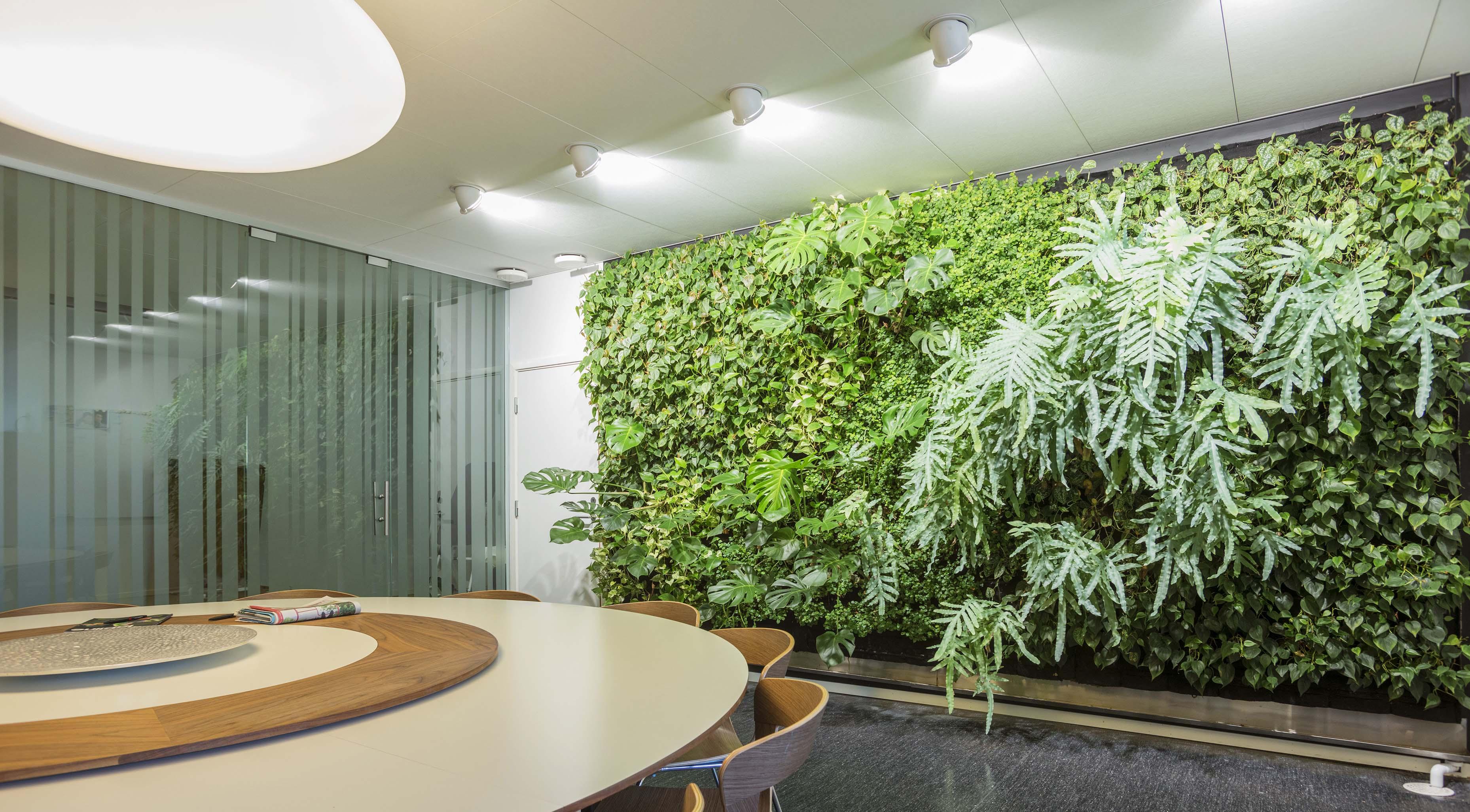 墻上能種植物嗎?植物墻設計方式有哪些?