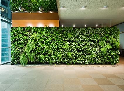 西安綠色植物墻