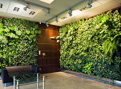 西安绿植墙公司