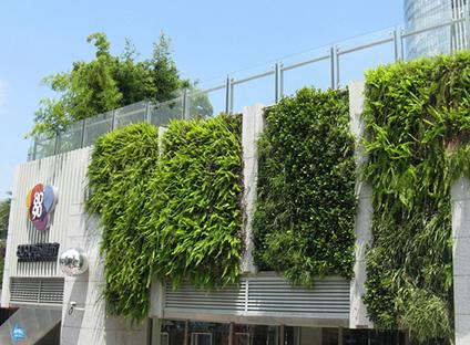 西安戶外植物墻