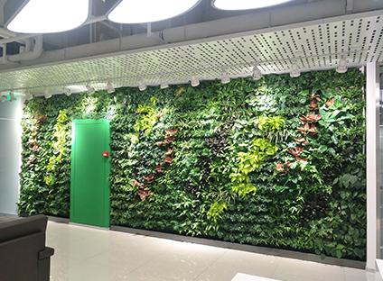 华为办公室绿植墙