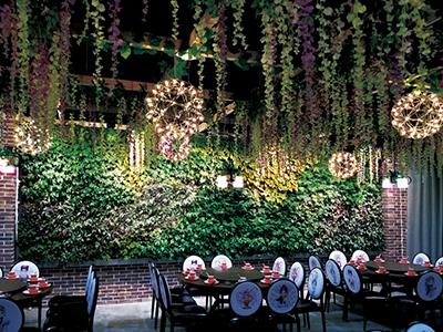 餐厅立体绿化墙