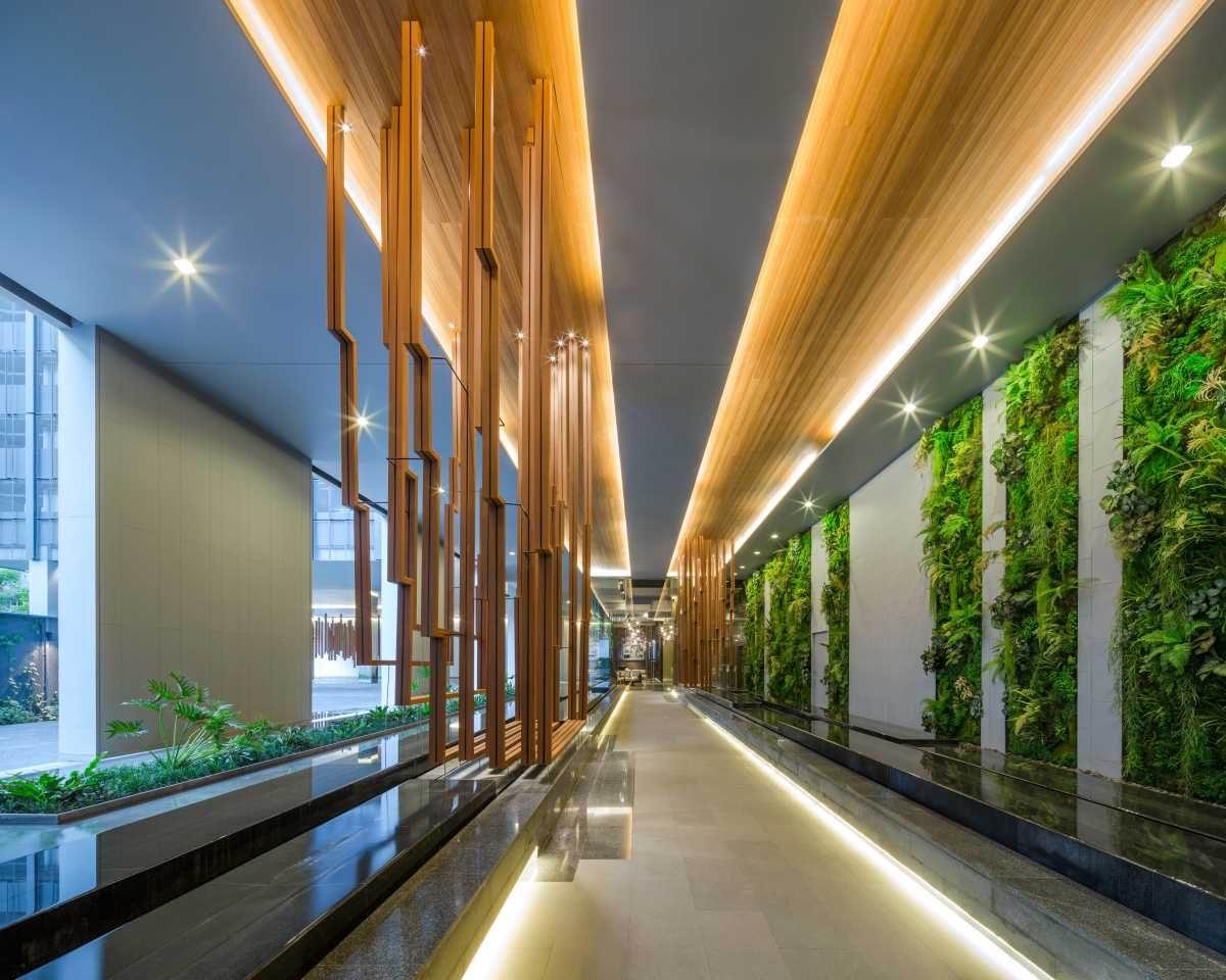 咸阳市立体绿化植物选择