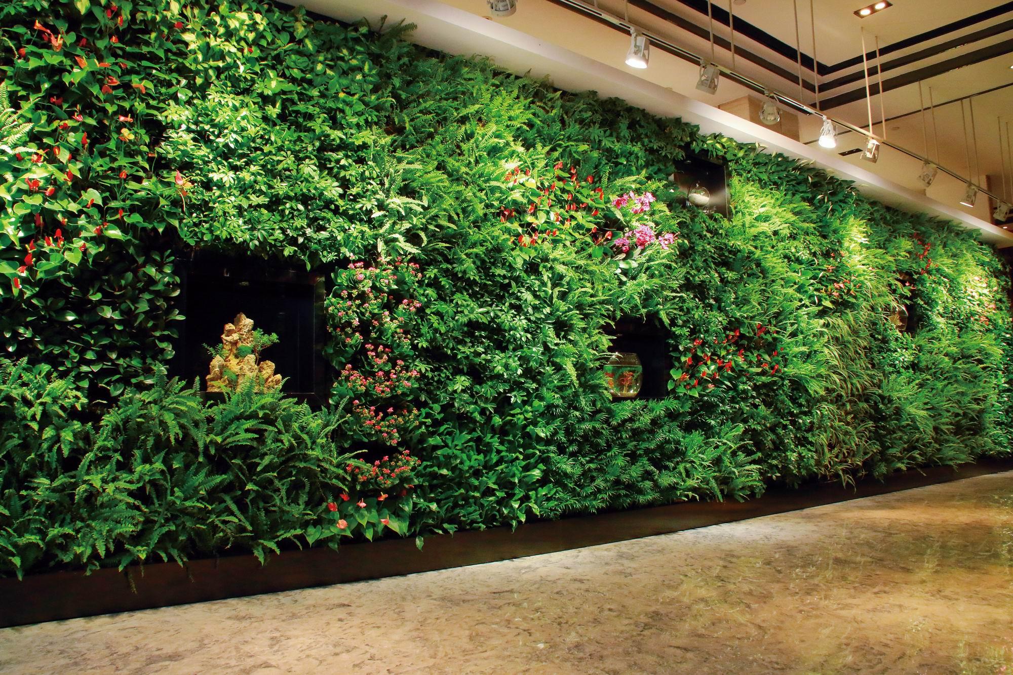 對于室外立體綠墻,應該怎么選擇植物?
