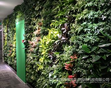 西安華為辦公室綠植墻