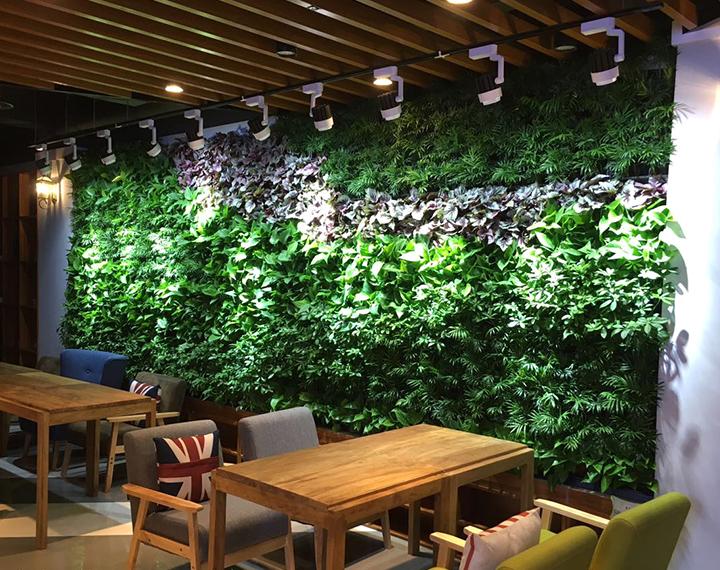 咸陽電影院室內植物墻