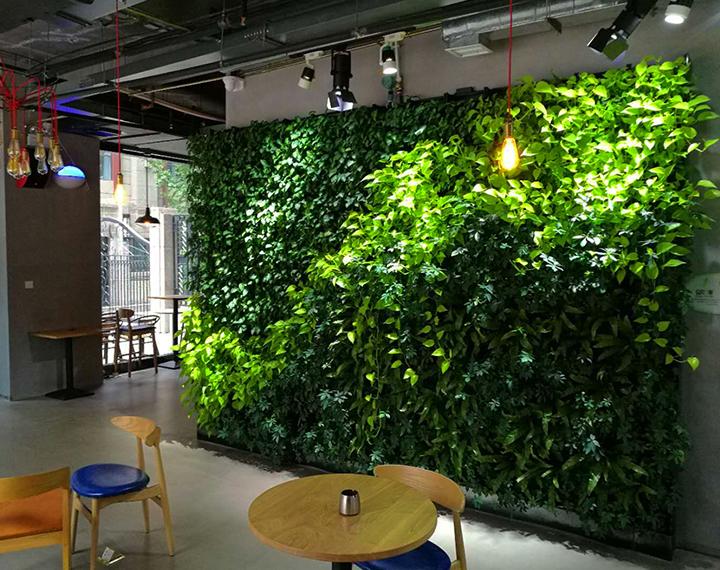 鳳城八路MOJO咖啡廳室內植物墻
