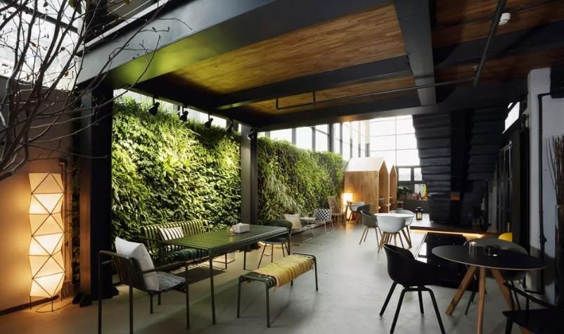 植物墙维护流程和注意事项知多少