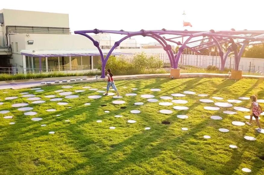 陕西屋顶绿化
